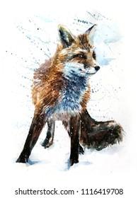 Fox watercolor painting predator