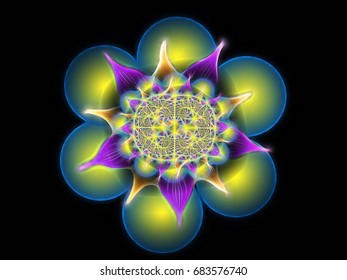 Fractal symmetry floral