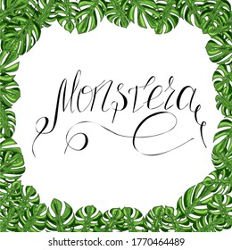 frame from the green leaves of monstera and lettering on a white background for design, print, textile, raster copy