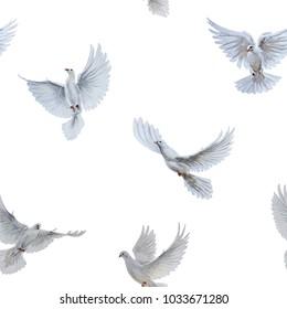 A free flying white dove on white bascground. Seamless pattern