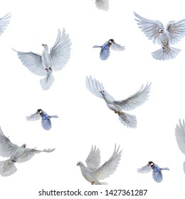 A free flying white dove and titbird on white background. Seamless pattern