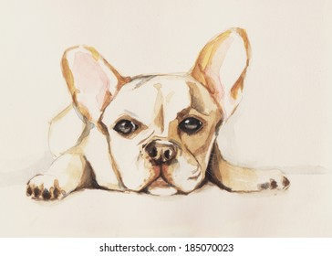 French bull dog painting on my notebook.