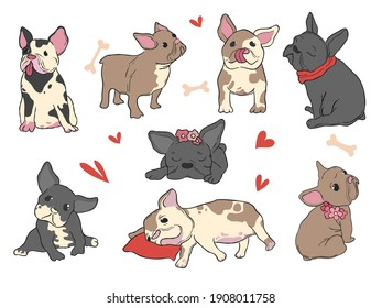 French bulldog. Funny pet puppy in different pose happy doggie hug fashion glamour style set