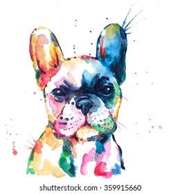 French bulldog. Original watercolor illustration of a dog.
