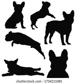 french bulldog silhouette, frenchie dog