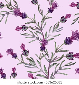 French lavender seamless pattern. Element for design of invitations, movie posters, fabrics and other objects. Isolated on white.