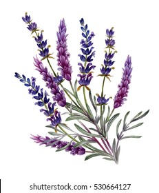 French lavender watercolor set. for Valentine's Day, wedding, sales and other events painted in watercolor style. for design of invitations, movie posters, fabrics and other objects.