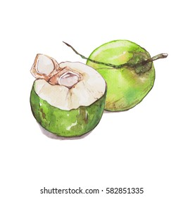Fresh coconut , watercolor painting isolated on white background for decorate card or menu.