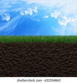 Fresh green grass, soil and sky background 3d illustration