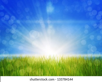 Fresh green grass in sun rays over blue sky background.
