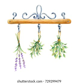Fresh herbs hanging on white background
