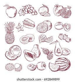 Hand Draw Fruits Images Stock Photos Vectors Shutterstock
