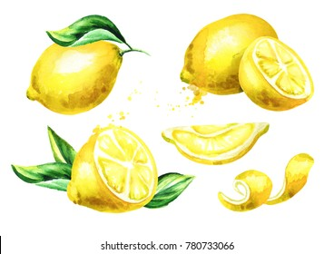 Fresh Lemon fruit compositions set. Watercolor hand drawn illustration