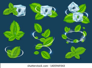 fresh mint leaf set. Spearmint herbal plant swirl, peppermint leaves and ice cubes.