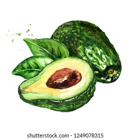 Fresh ripe avocado with leaves. Watercolor hand drawn illustration, isolated on white background