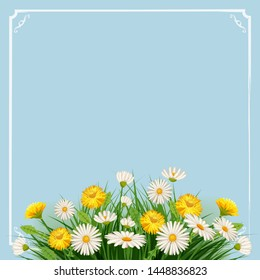 Fresh spring background with grass, flowers dandelions and daisies, template, baner, poster,