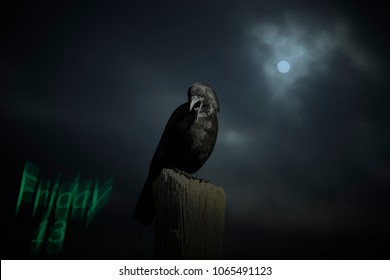 Friday 13 background with crow in a scary overcast full moon night