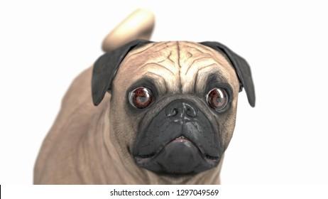 Frightened and amazed eyes of pug dog breed 3d illustration