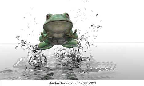 Front view of frog out of water leaping and jumping white background 3d rendering