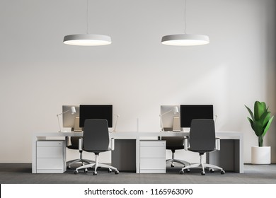 Front view of white office with gray carpet on the floor, white ceiling lamps and columns and rows of white computer desks. Plant. 3d rendering mock up