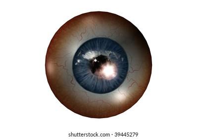 frontal eye