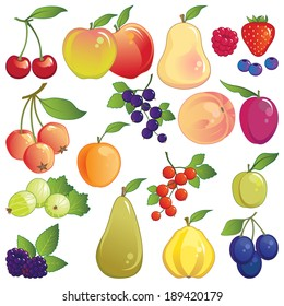 Fruit set. Large icon collection of fresh orchard and garden fruit.