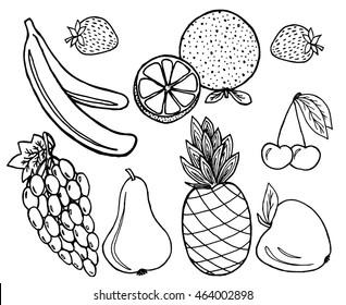 Fruits set on white background. Free hand drawn.  illustration.