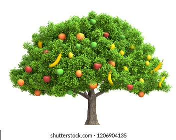 fruits tree isolated on white 3D illustration