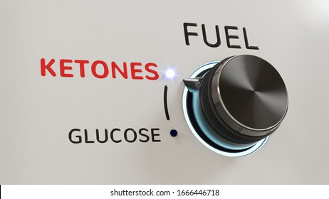 """A """"fuel"""" knob set to ketones, out of glucose and ketones (3D rendering)"""