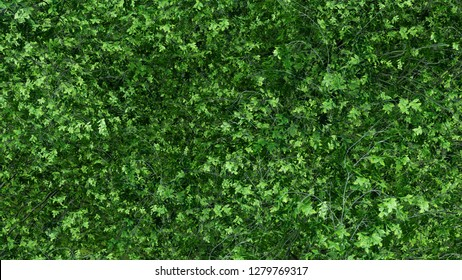 Full Leaves Wall background high detailed green life texture 3d render