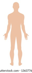 Full length back view of a standing naked man. You can use this image for fashion design and etc.