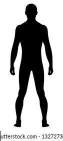 Full length front view of a standing naked man. You can use this image for fashion design and etc.