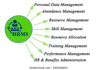 Functions of human resource management system