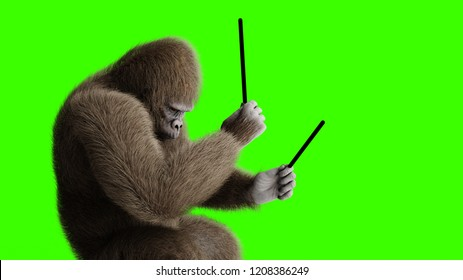 Funny 3d brown gorilla play the drum. Super realistic fur and hair. Green screen. 3d rendering.