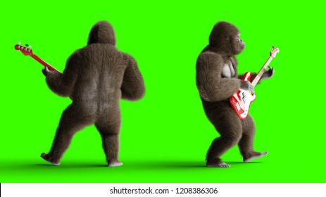 Funny 3d brown gorilla play the bass guitar. Super realistic fur and hair. Green screen. 3d rendering.