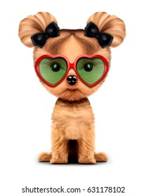 Funny adorable girl of yorkshire terrier with sunglasses, isolated on white. 3D illustration with clipping path