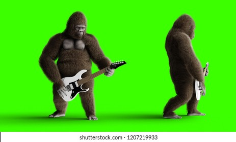 Funny brown gorilla play the electric guitar. Super realistic fur and hair. Green screen. 3d rendering.