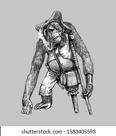 Funny chimp pirate. Big ape with a pipe. Chimpanzee illustration.