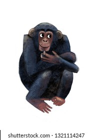 funny chimpanzee monkey, modest macaque, print illustration