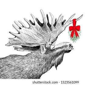 Funny Christmas moose waiting for a kiss under mistletoe in humorous fun  holiday design. Hand drawn animal sketch for party invitations or border illustration. Festive character in cute image scene.