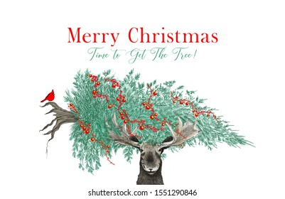 Funny Christmas tree scene with moose carrying a Christmas tree with cardinal and Merry Christmas greeting text  in hand drawn holiday sketch or illustration for party invites or fun animal designs