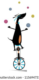 Funny dog rides on unicycle and juggles the balls illustration. Equilibrist dog rides on unicycle and juggles the balls isolated on white illustration