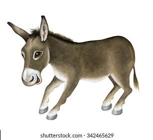 Funny Donkey. Watercolor