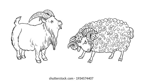 Funny goat and sheep. Funny farm animals. Template for children to paint.