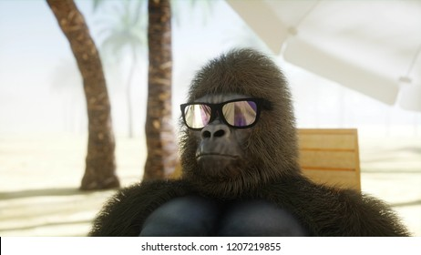 Funny gorilla in glasses lies on a deckchair. Beach and palms. Spa, resort concept. 3d rendering.