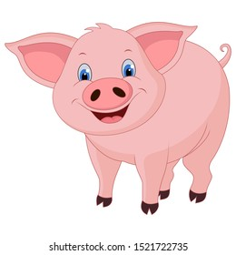 Funny pig cartoon isolated white background