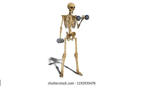 Funny Skeleton Images, Stock Photos & Vectors | Shutterstock