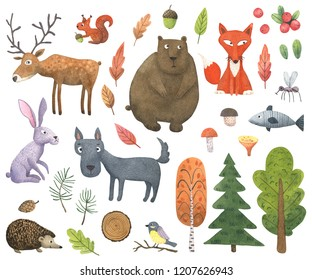 Funny watercolor forest animals and plants set. Hand painted bear, fox, wolf, deer, hedgehog, hare, fish, squirrel, tit and mosquito isolated on white. Ideal for baby print, poster or nursery design