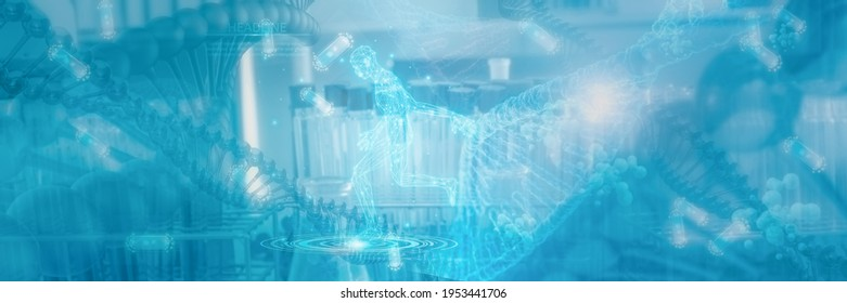 Futuristic Wireframe human body active and DNA,3D render illustration model polygonal dot and line,concept medical and technology,virtual scan anatomy body,Artificial intelligence or AI,deep learning