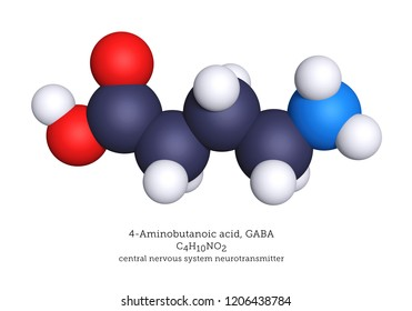 GABA is an inhibitory neurotransmitter of the nervous system. GABA binds to receptors in the neural membrane, opening ion channels that allow chloride anions into the cell or potassium cations out.